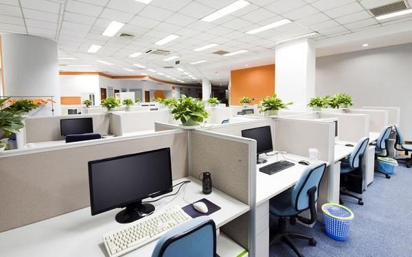 Làm mới không gian văn phòng cho mùa hè oi bức